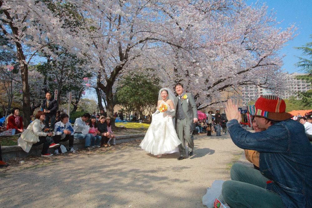 結婚式 前撮り 桜 ウェディングドレス